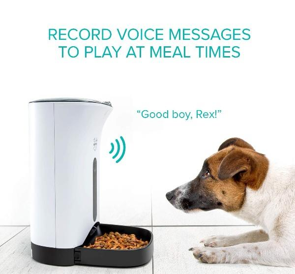 automatic pet feeder app