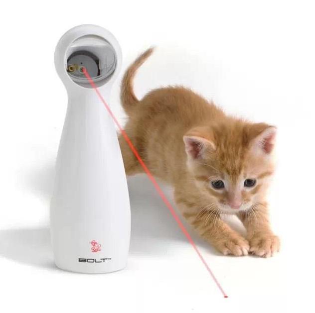 pet smart toy