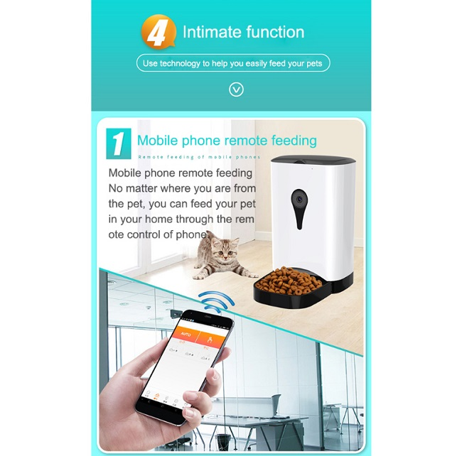 pet food feeder intime function