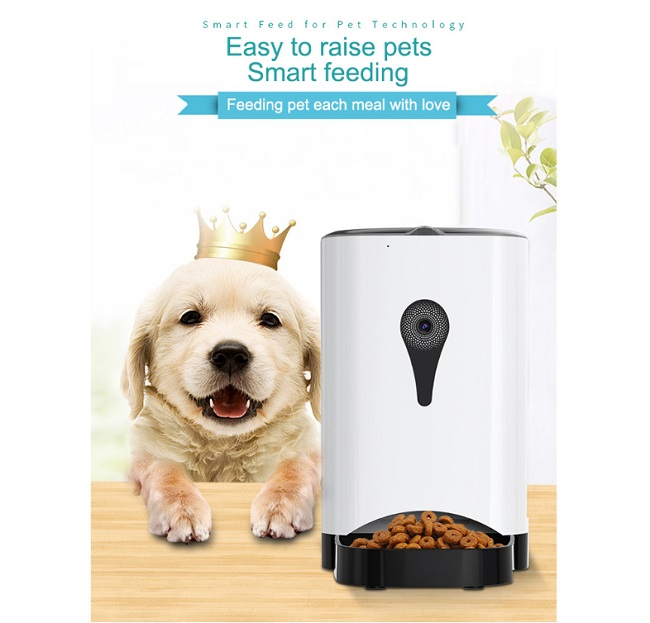 pet food feeder loyal treadment